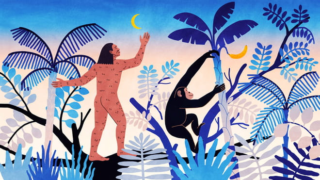 Illustration of a jungle environment with at the center a human figure reaching out to the moon and a money reaching out to a banana.