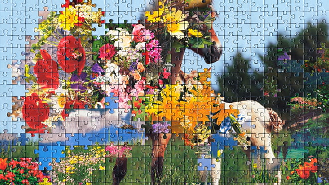 Photo of a puzzle, combining pieces from different types of images together to create new landscape. Here a flowery landscape is combined with a picture of two horses.
