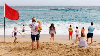 Photo of peoples backs, standing on a beach, looking at a wave coming in. A red flag is blowing in the wind.