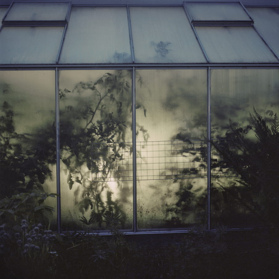 Photograph that shows part of a green house in a dimly lit environment. Light shines from the inside out.