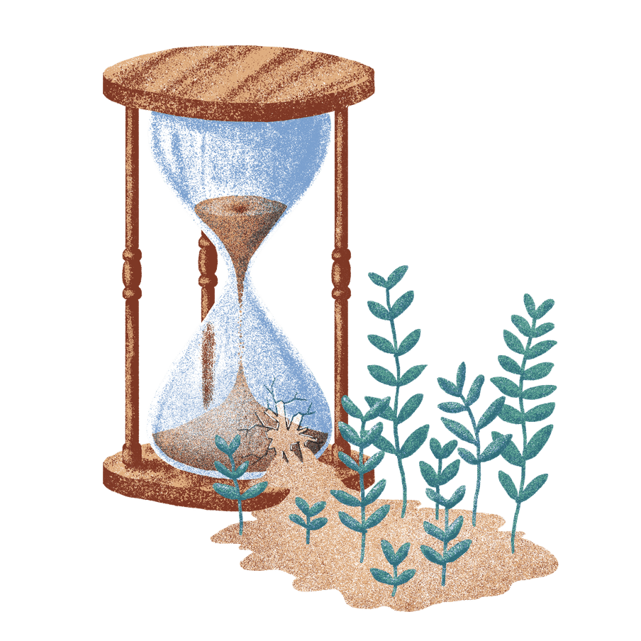 Illustration of an hourglass, sand trickling out of it, new plants growing from the sand