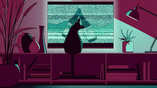 Illustration of a tv screen with a beer commercial, distorted, and a cat sitting in front of it. The graphics in this article are interactive, so unfortunately we can't add alt text to those