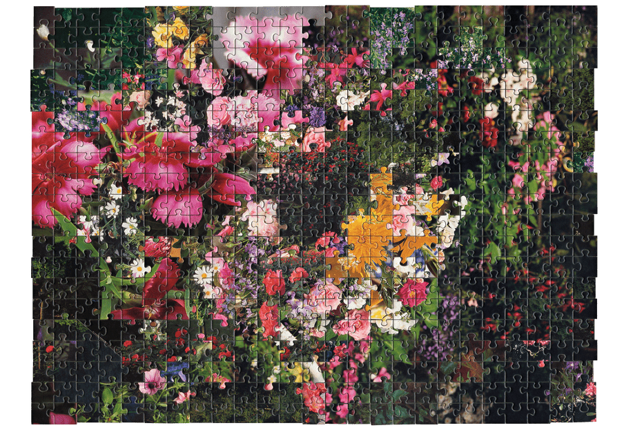 Photo of a puzzle, combining pieces from different types of images together to create new landscape. Here several pictures of bouquets of flowers are combined.