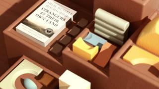 What looks like a brown foam-looking staircase with inlaid margins, upon which rest pastel yellow, blue, orange and white foam-looking arcs or shapes in 3D shapes. The light on this scene casts a shadow on the different depths of the drawers. On the lowest level is a white book by 'Arlie Russell Hochschild' called 'Strangers in Their Own Land'.
