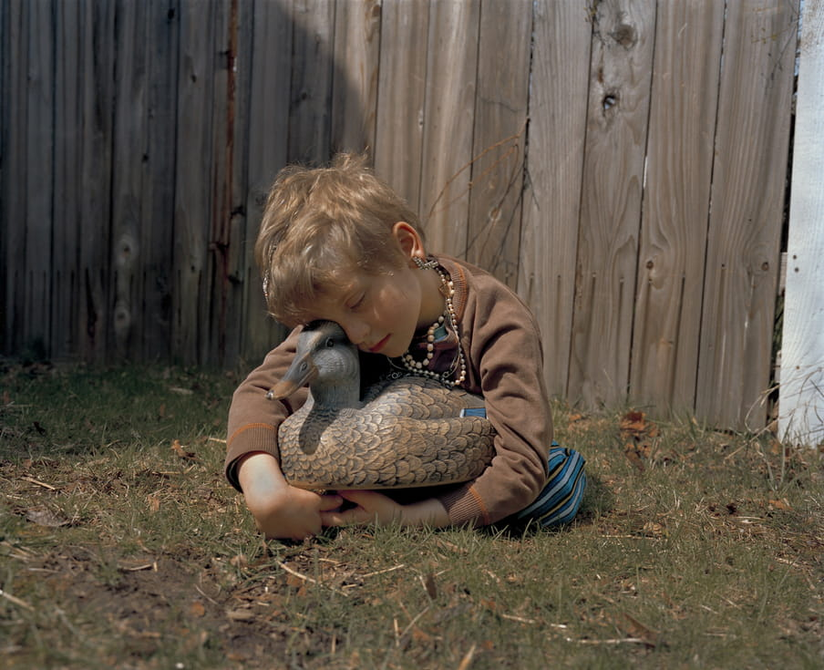 Photo of a boy sleeping with a fake duck in his arms