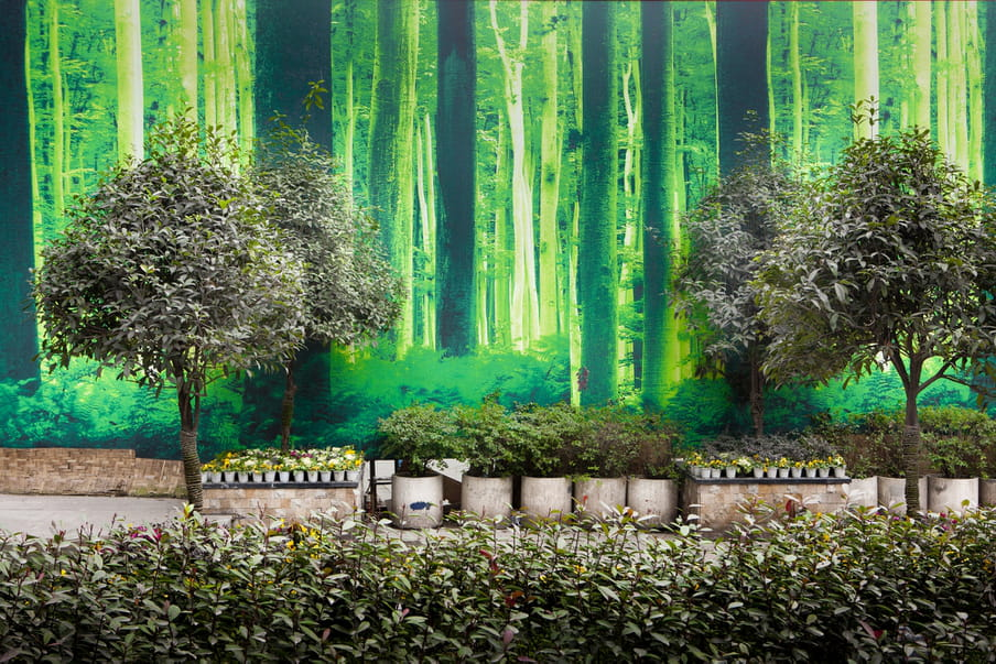 Trees and flower pots standing in front of a wall featuring a photograph of a forest in a fluorescent green.