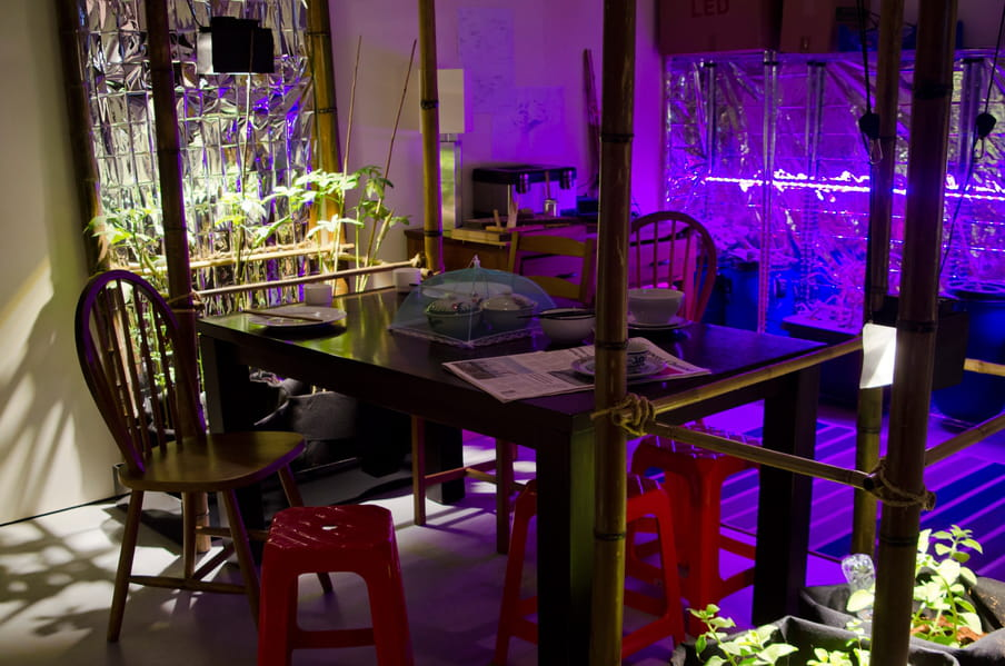Photo of a dining area surrounded by food growing under artificial lighting