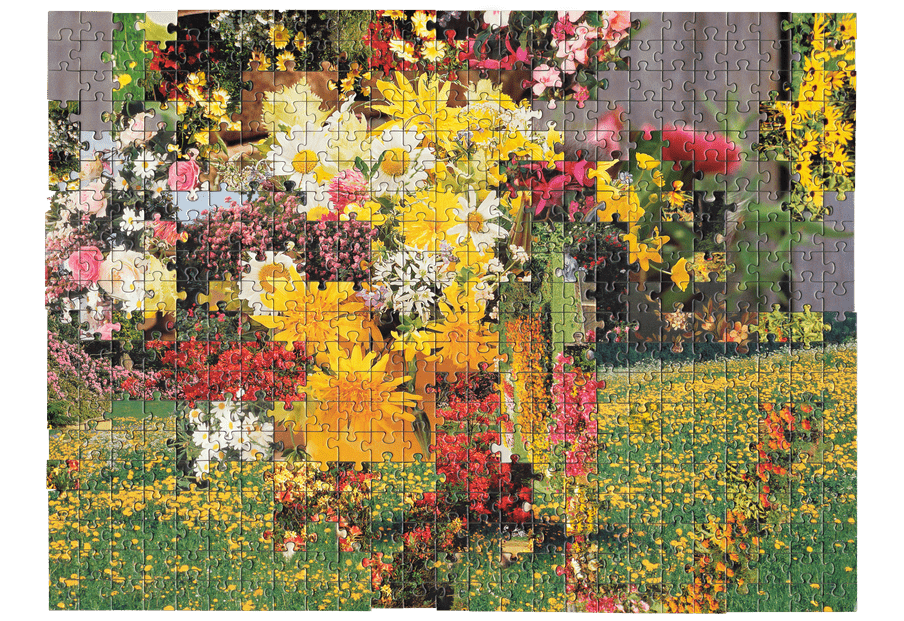 Photo of a puzzle, combining pieces from different types of images together to create new landscape. Here a flowery landscape is combined with a close up picture of flowers.