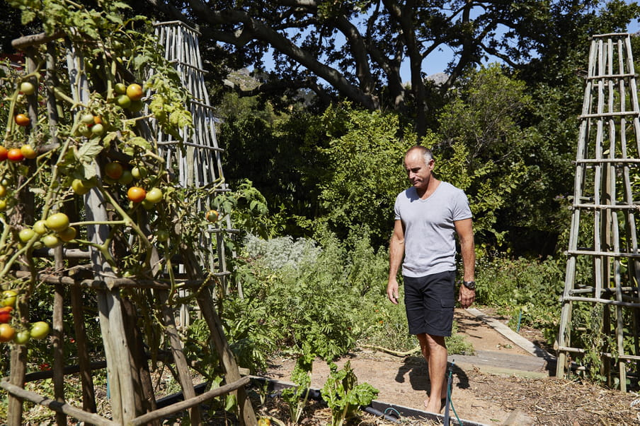 A man in a grey shirt in a vegetable garden, with some tomato racks
