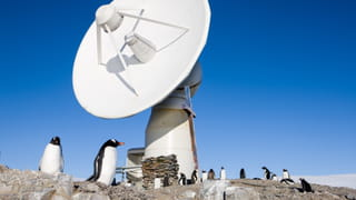 Penguins are standing next to a satellite.