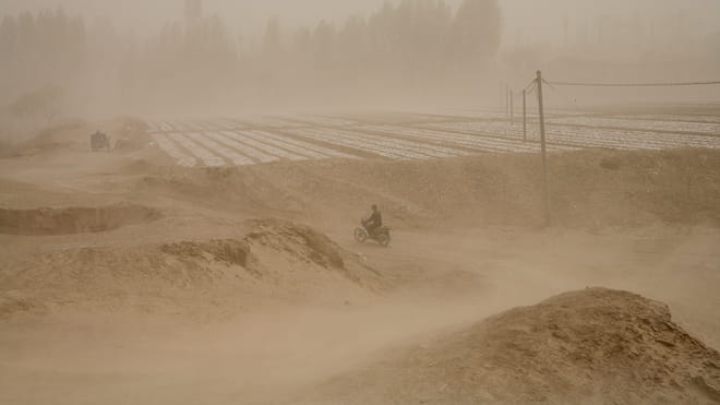 Photograph showing a man on a motorcycle on a road near a field. The entire scene is covered by sand.