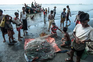 On the Beydar beach, adjacent to the camp, fishing boats bring their catch ashore. Photo by Andreas Staahl